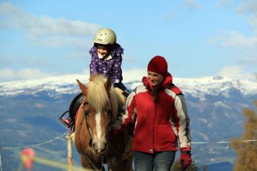 Ponyreiten auf kinderlieben Hafis