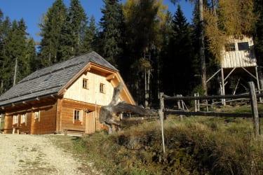 Wurzelhütte mit Baumhaus