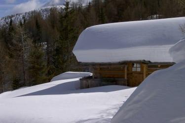 Sauna-Hütte