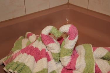 Schwäne im Badezimmer