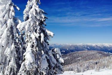 Im Winter traumhafte Pisten in der Nähe