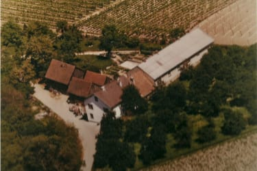 Wolfsberghof anno 1976