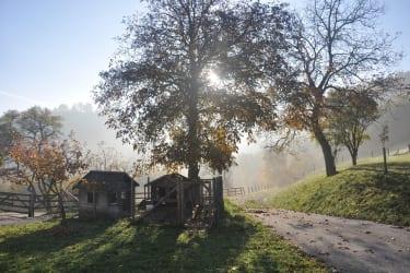 Herbststimmung am Landhaus