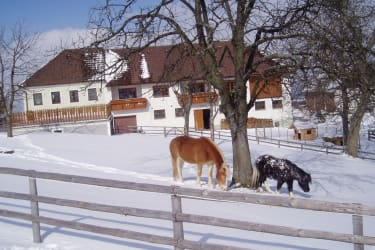 Winterfoto , Haus südseitig