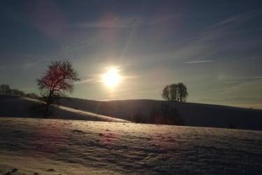 Biohof Haunschmid-Winterlandschaft