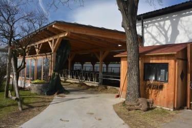 Biohof Haunschmid-der neue Laufstall