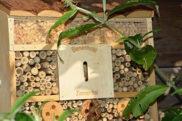 Biohof Haunschmid-Bienenhotel