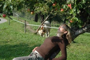 Naturgenuss unterm Apfelbaum