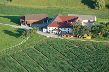 Bauernhof mit Maislabyrinth
