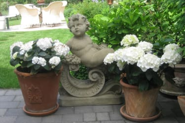 Weinpension Andrea - Hortensien und Engel begrüßen beim Gartenzugang hinterm Haus