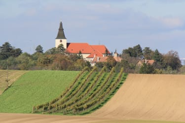 Wehrkirche Stillfried - errichtet 1241 - Wahrzeichen von Stillfried/Grub (Foto: Winzerhof Küssler)