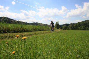 Mountainbiken im Waldviertel - hier auf der Fassldorf Strecke