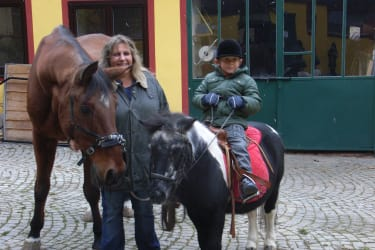 Pony Niki