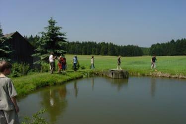 Frösche fangen am Teich