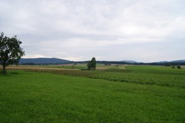 Ferienhaus Prager - Ausblick