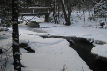 Brücke Lainsitztal