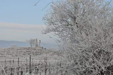 Winterlandschaft in Retz