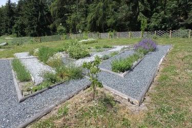 Wald-Genuss-Erleben - Kräutergarten