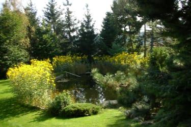 Gästehaus Pointner - Garten mit Schwimmteich
