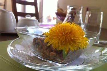 warmes Müsli mit Löwenzahnblüte