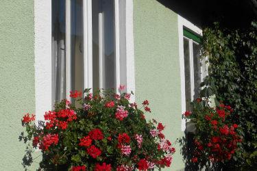 Blumenschmuck am Haus
