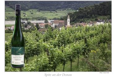 Der Nachbarort Spitz aus den Weingärten aufgenommen.