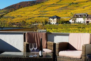 Terrasse mit Ausblick auf die Weinberge