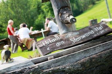 Willkommen am Steinwandhof