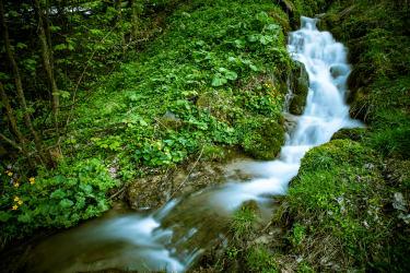Zeidelhof - Bachlauf mit Wasserfall (© Christoph Kempter / www.lensflair.at)