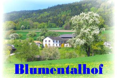 Frühling am Blumentalhof