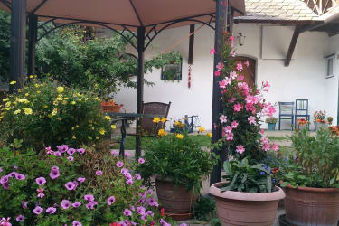 Blumenpracht im Hof