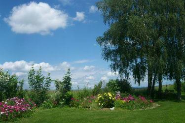Garten vor dem Haus