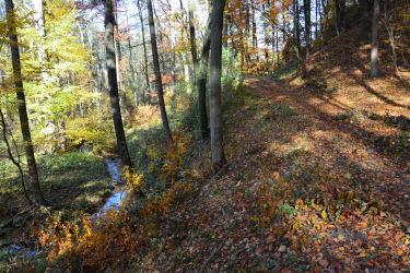 Wanderweg zur Schallaburg