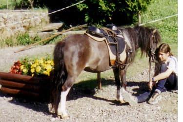 Pferdeflüsterer Kathrin
