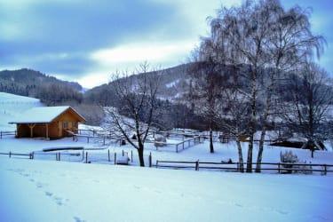 der Spielplatz im Winter