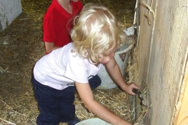 Kinder Helfen das Futter herrichten