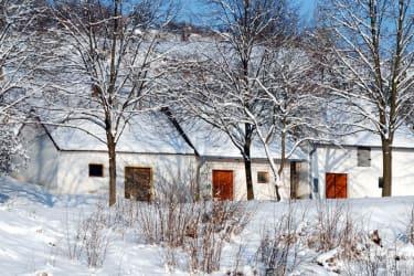 Kellergasse Zwentendorf im Winter