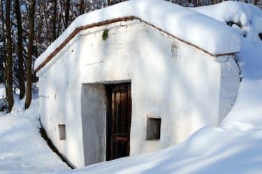 Privatzimmer Schulz - Weinkeller im Schnee
