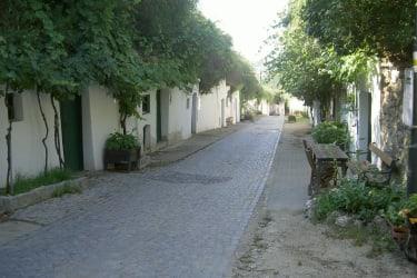 Kellergasse Rösselberg