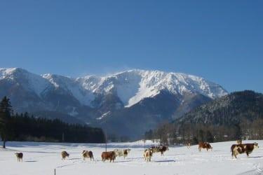 Schneeberg im Winter
