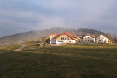 Ötscherblick Familie Winter - Nebel (© Winter Angelika)