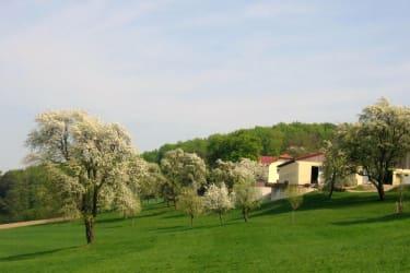 Hausihof - Haus
