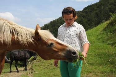 Zwergerlhof - Hier bekommt gerade Norbsi eine grüne Leckerei, im Hintergrund seht ihr Pony Lisa