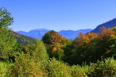 Herbst in Loich
