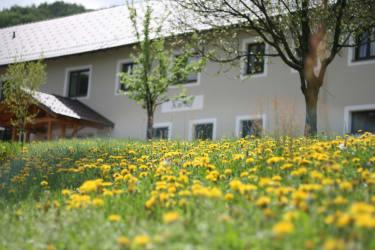 Karhof - Vor dem Karhof gibt's viel Grün um Entspannen und Ruhe genießen