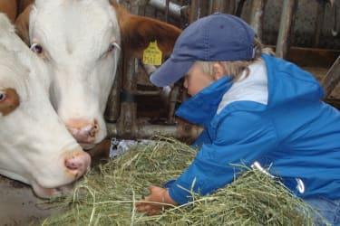 Karhof - jeder der mag darf beim Versorgen der Tiere mithelfen (täglich außer Sonn- und Feiertag)