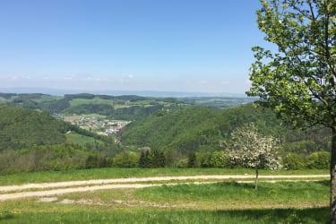 Ferienwohnung Hochbrand - Natur pur