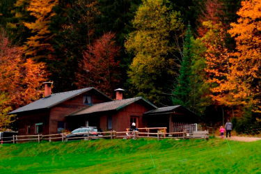Waldhaus im Herbst