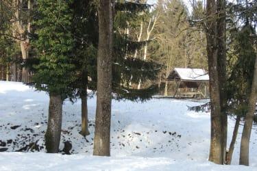 Ferienwohnung Heimberger - Rotwildgehege Winter