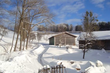 wunderschöner Wintertag